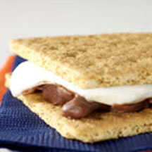 Turtle S'Mores